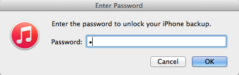 Inserting the blank password character into the iTunes restore dialog box.