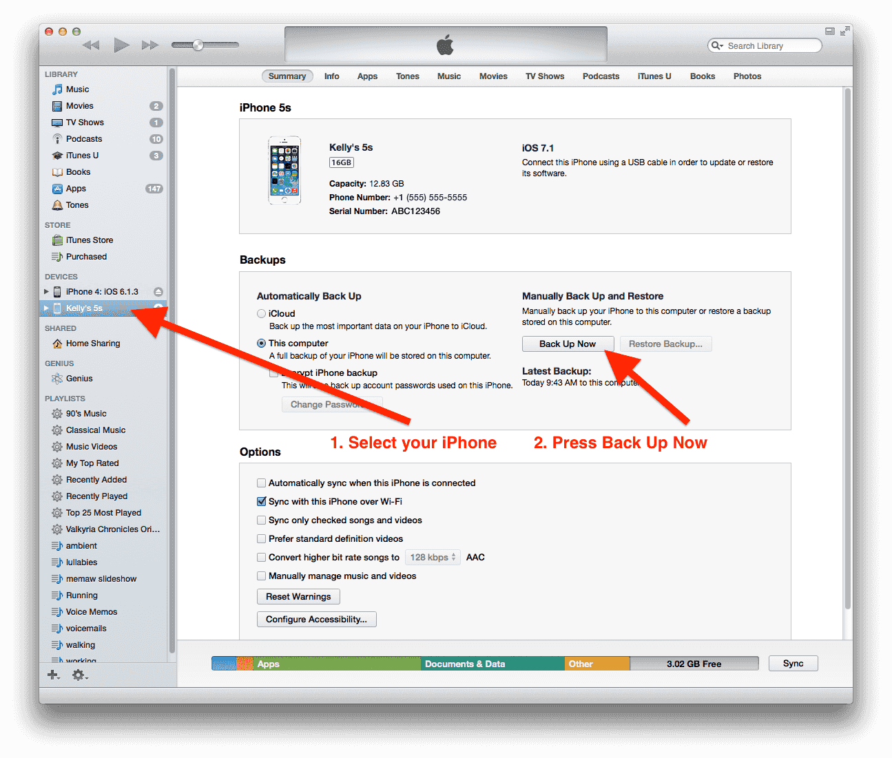 Make a backup in iTunes by selecting your phone from the devices list on the left.