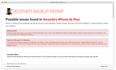 Preview issues found in your broken iPhone backup prior to repairing.